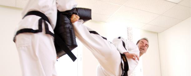 Taekwondo_landing_01